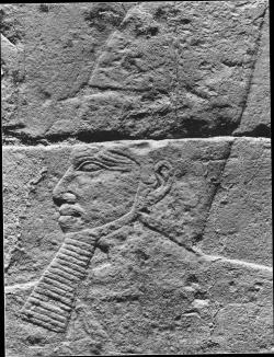 Fig. 9. Relief of Djoser