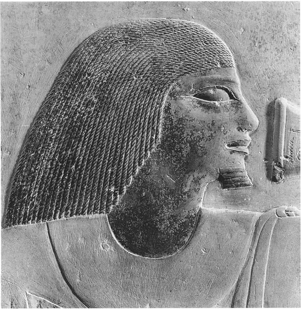 The human image in Old Kingdom nonroyal reliefs