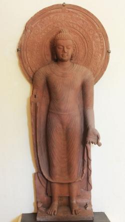Escuela de Mathura: Buda. Dinastía Gupta. Hacia el 380. Arenisca rosa, 217 cm