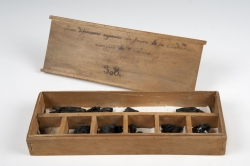 Caja de Herculano. Caja de madera de haya y restos vegetales. Museo Arqueológico Nacional (Madrid). Los restos vegetales proceden de las excavaciones realizadas en Herculano durante el siglo XVIII.