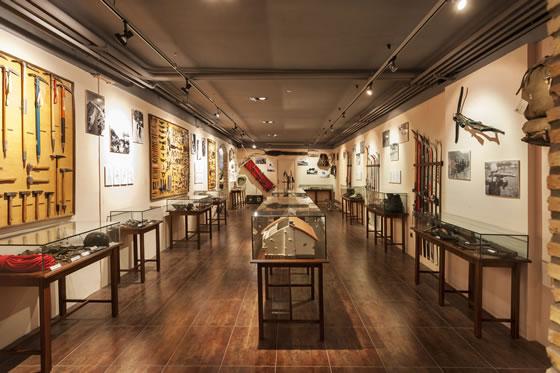 Museo EMMOE - Sala 2. La evolución