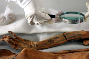 Peruvian archaeologist inspects the tattooed arm of a mummy from ancient Moche culture in Trujillo