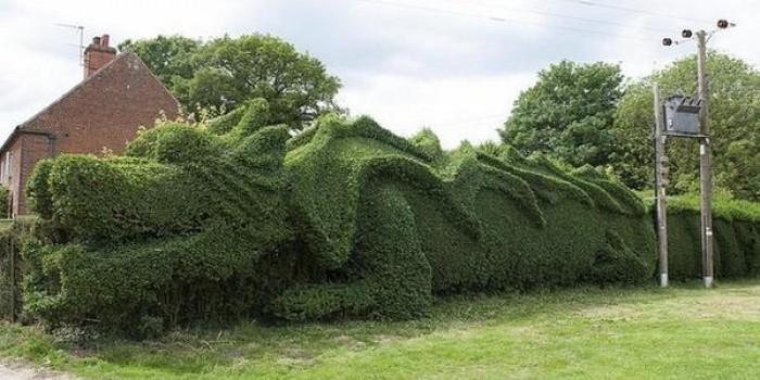 Ponga un dragón en su jardín