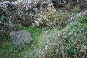 Ainielle: la lluvia amarilla. Cementerio de Ainielle