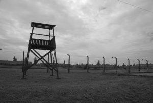 Auschwitz II (Birkenau): Vista general