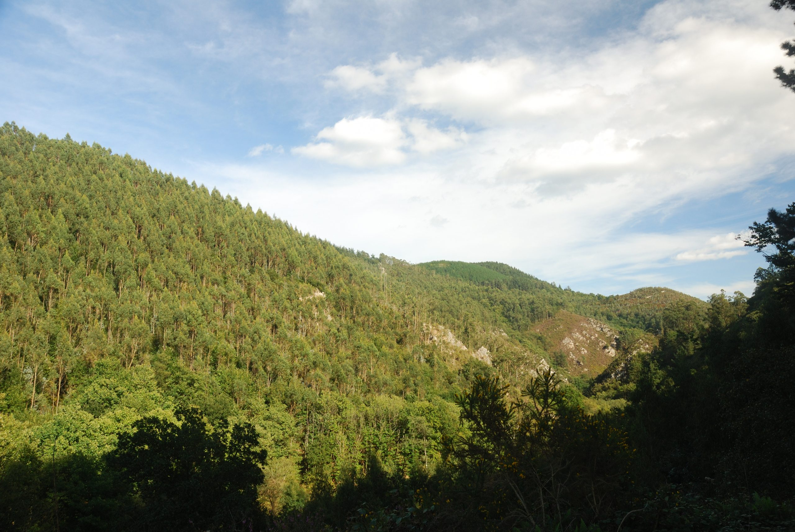 Entre Salas y Bodenaya