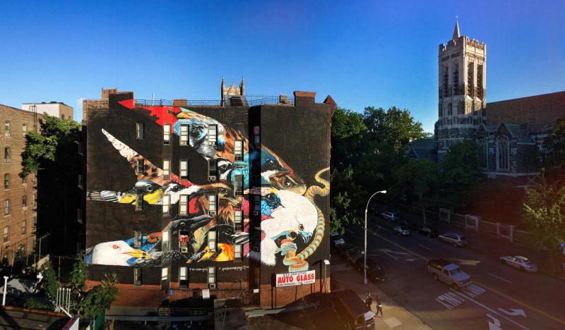 Audubon Mural Project. El mural de Elanio Tijereta contiene otras 12 especies amenazadas por el clima. La torre de iglesia que se aprecia a la derecha del mural, es el sitio de descanso final de John James Audubon. Foto: Mike Fernandez/Audubon