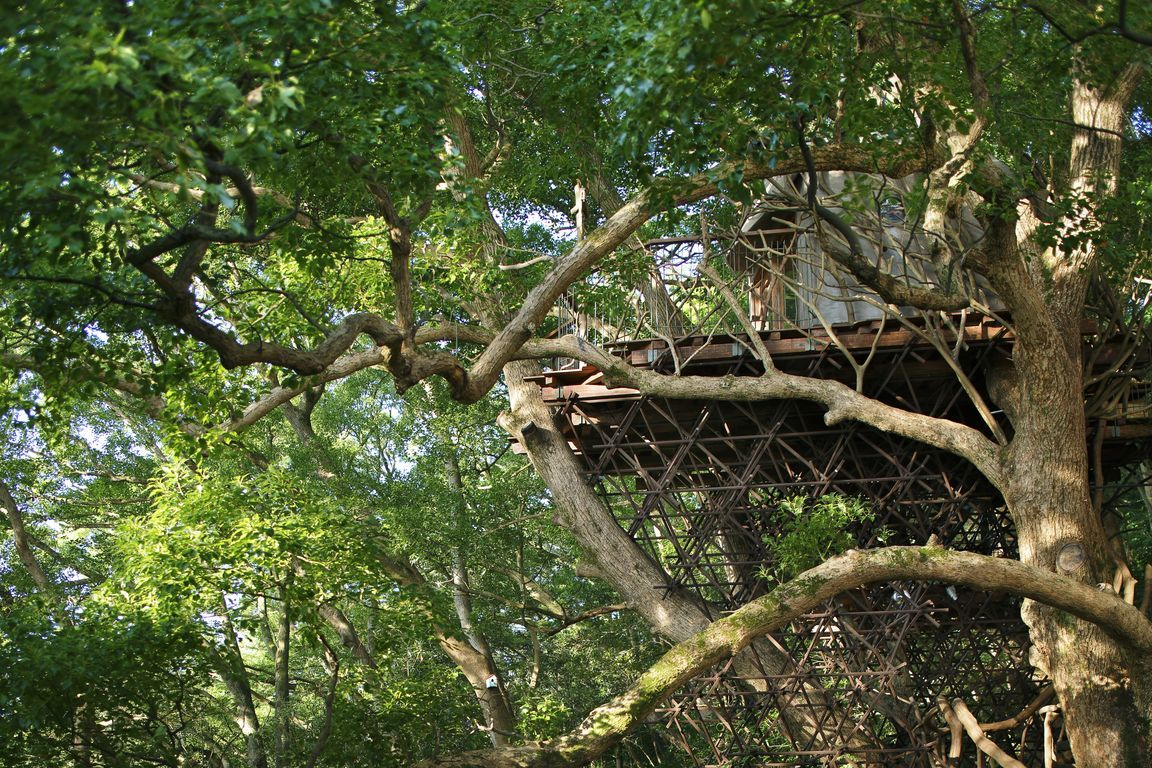 A Bird's Nest Atami (Hiroshi Nakamura)