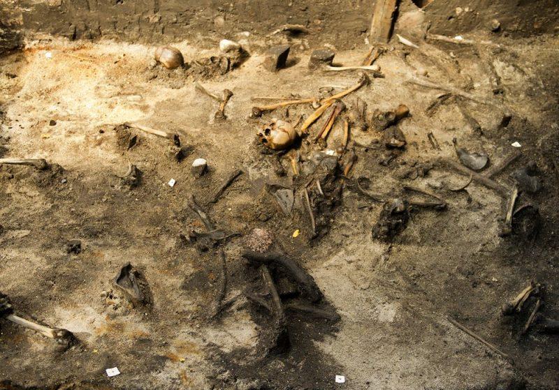 Restos óseos de guerreros caídos hallados en el sitio arqueológico de Alken Enge, al este de la península de Jutlandia. © MADS DALEGAARD / MEDIEAFDELINGEN, MOESGAARD