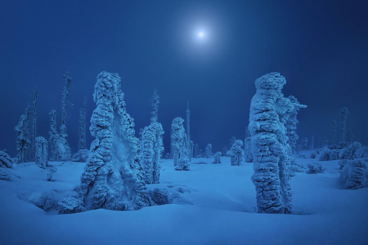 Se acerca el invierno. Fotografía de Kilian Schönberger