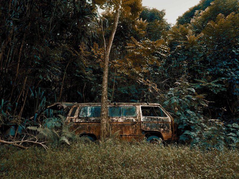 Thomas Strogalski: Nature takes over (Island of Maui, Hawaii)
