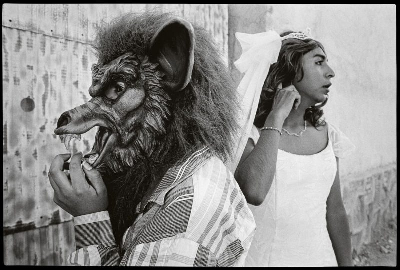 Jenna Mulhall-Brereton: Bride and Wolf, San Martin Tilcajete, Mexico