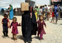 Iraqi families displaced by fighting in their home towns receive humanitarian aid at the Khazir refugee camp, near Erbil, northern Iraq, 23 July 2014. (Kamal Akrayi/EPA)