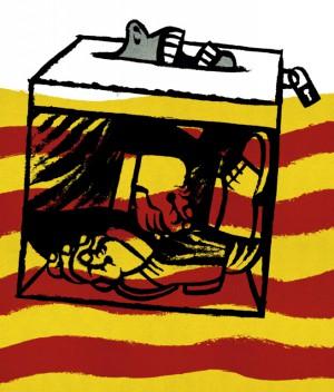 La consulta ¿Constitución vs Democracia?