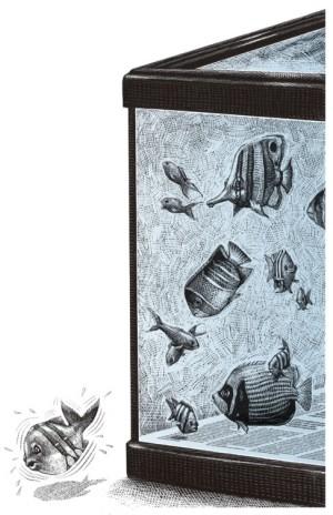 De peces y peceras