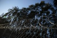 """Barbed wire fence surrounding a military area is pictured in the forest near Stare Kiejkuty village, close to Szczytno in northeastern Poland, Jan 24, 2014. The facility was allegedly used as a """"black site"""" by the CIA. REUTERS/Kacper Pempel"""