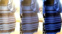 Why blue/black/white/gold dress went viral