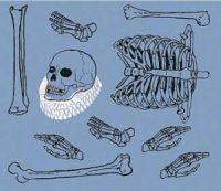 Sobre reliquias y huesos