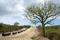 Cañerías colocadas cerca del lugar donde Ecuador quiere que una petrolera china construya una refinería gigante, fuera del puerto de Manta. China ha invertido grandes cantidades en proyectos petroleros en el extranjero. Credit Ivan Kashinsky para The New York Times