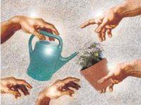 No es la ecología, es la teología