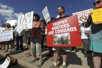 Muchos manifestantes exigen la muerte del cazador que mató a Cecil. Credit Eric Miller/Reuters