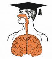 La enseñanza y el lenguaje trampa