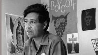 Cesar Chavez, farm worker, labor organizer and leader of the California grape strike, works in a Calif. office in 1965. (George Brich / Associated Press)