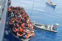 The Migration Puzzle