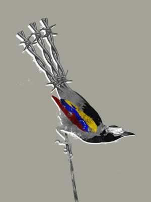 La reconquista democrática de Venezuela