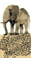 El elefante blanco llega al Congreso