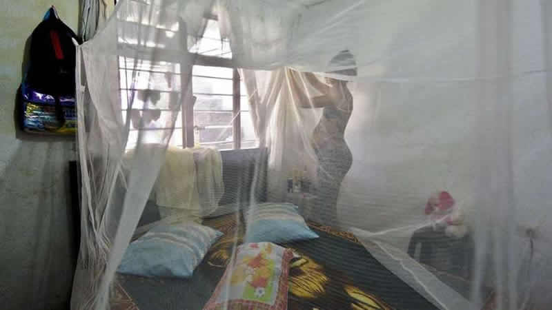 A woman who is seven months pregnant installs a mosquito net over her bed in Cali, Colombia on Feb. 17. (Luis Robayo / AFP/Getty Images)