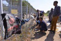 Un grupo de refugiados, en un campamento de Serbia junto a la frontera con Hungría. EDVARD MOLNAR (EFE)