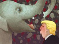 Trump, sí o no