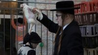 An ultra-Orthodox Jewish man swings a chicken over his wife while performing the Jewish ritual called 'kapparot' in Jerusalem on Oct. 10. (Atef Safadi / European Pressphoto Agency)
