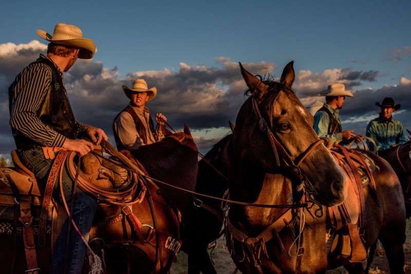 The Cochise County Fair near Douglas, Arizona. Credit Tomás Munita for The New York Times