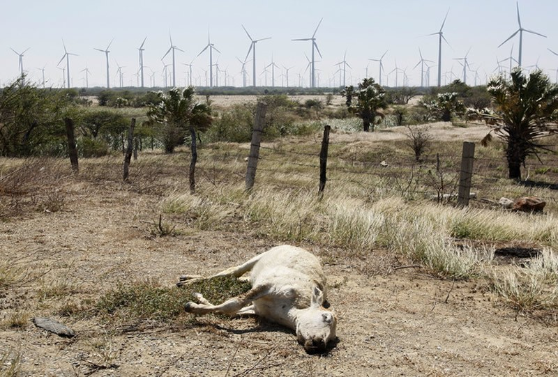 Resource extraction in Mexico's arid climate comes at the cost of agricultural devastation in some border areas. Jorge Luis Plata/Reuters