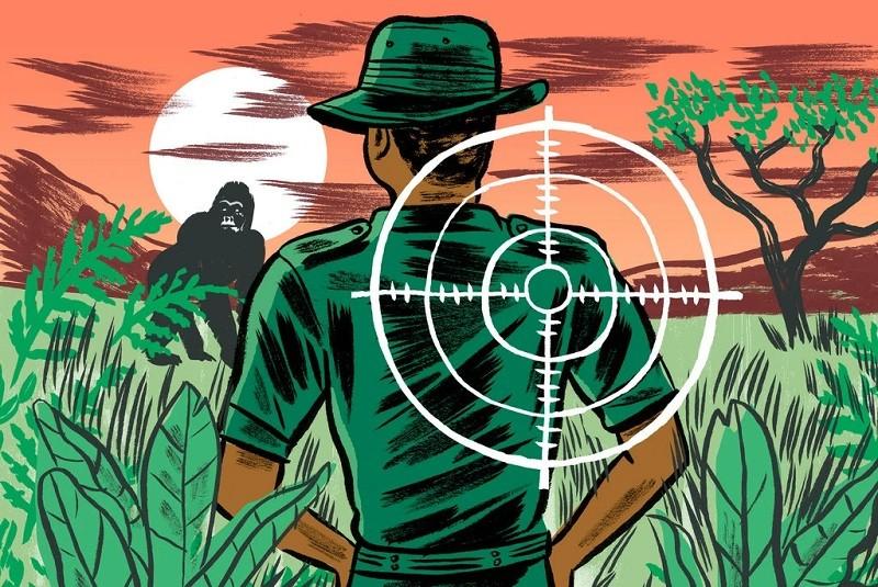 Poaching's Bloody Human Toll