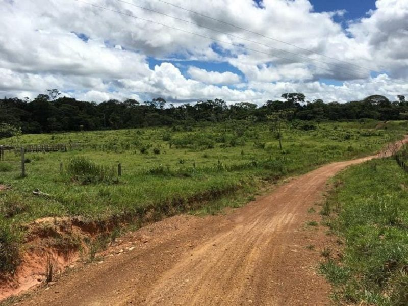 A dirt road in Guaviare, a remote region of Colombia. CRISIS GROUP/Kyle Johnson