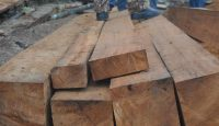 21 April 2016: Timbers seized from illegal loggers in Indonesia. Photo: Getty Images.