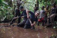 Scientists work with a peat corer in the swamps near Lokolama, Congo. Oct. 28. (Kevin McElvaney/Greenpeace)