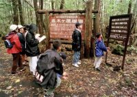 Schoolchildren read signs posted in the dense woods of the Aokigahara forest at the base of Mount Fuji in Japan in 1998. (Atsushi Tsukada/Associated Press)