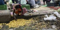 An Indian woman picks out lemons left discarded as rotten on the edge of a vegetable market. SHAMMI MEHRA/AFP/Getty Images