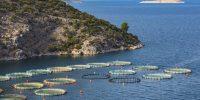 El futuro de las piscifactorías