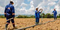 Escuchemos a los futuros agricultores de África