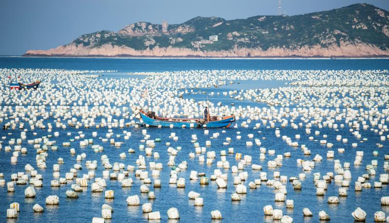 A fisherman in his boat passing buoys in the port of Gouqi Island, Zhejiang, China. Photo: Getty Images.