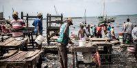 El alto coste de los monopolios alimentarios en África