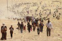 Des Irakiens yézidis fuient les attaques de l'Etat islamique et se dirigent vers la frontière syrienne, le 10 août 2014. Photo Rodi Said. Reuters