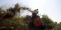 Por qué fortalecer los derechos sobre la tierra apuntala el desarrollo