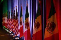 Mi año como embajadora de Trump en México