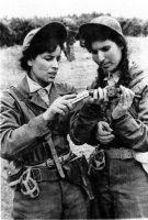 1957, des combattantes du FLN dans le maquis pendant la guerre d'Algérie. Photo Zebar. Andia